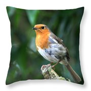 Robun 3 Throw Pillow