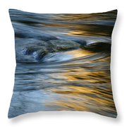 Rock And Blue Gold Water Throw Pillow