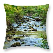 Rock Creek Bed Throw Pillow