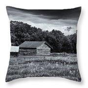 Rock Creek Station Throw Pillow
