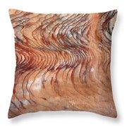 Rock Formation At Petra Jordan Throw Pillow