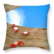 Rock Lobster Throw Pillow