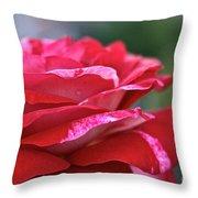 Rock N Roll Rose Throw Pillow
