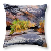 Rock Shrub And Bluff At Cumberland Falls State Park Throw Pillow