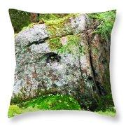 Rock Spirits Keeping Secrets Throw Pillow