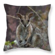 Rock Wallaby V2 Throw Pillow
