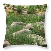 Rocks And Grass At Amidon Conservation Area Missouri Throw Pillow