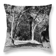 Rocks And Trees In Black And White Throw Pillow