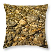 Rocks In Crystal Clear Water Throw Pillow