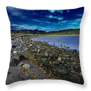 Rocky Beach In Western Canada Throw Pillow