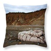 Rocky Beach Throw Pillow
