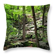 Rocky Forest Of Chatfield Throw Pillow