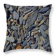 Rocky Maine Throw Pillow