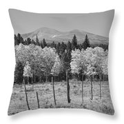 Rocky Mountain High Country Autumn Fall Foliage Scenic View Bw Throw Pillow