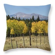 Rocky Mountain High Country Autumn Fall Foliage Scenic View Throw Pillow