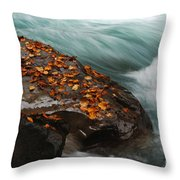 Rocky Mountain Stream Throw Pillow