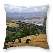 Rocky Ridge Throw Pillow