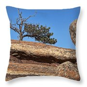 Rocky Tree Throw Pillow