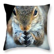 Rodent Throw Pillow