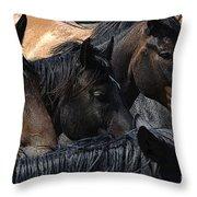Rodeo Bucking Stock Throw Pillow
