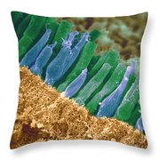 Rods And Cones In Retina Throw Pillow