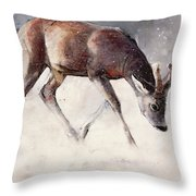 Roe Buck - Winter Throw Pillow by Mark Adlington