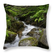 Rolling Throw Pillow
