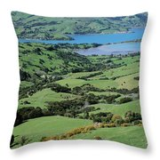 Rolling Fields With Grazing Sheep Throw Pillow