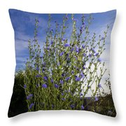 Romaine Lettuce Flowers Throw Pillow by Donna Munro