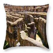 Roman Coliseum Underground Throw Pillow