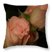 Romance In Pink Throw Pillow