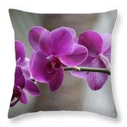Romantic Purple Orchids Throw Pillow