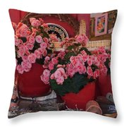Ron's--a Favorite Store In Grover Beach Ca Throw Pillow