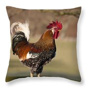 Rooster Gallus Gallus Northumberland Throw Pillow