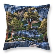 Rooted In Solid Rock Throw Pillow