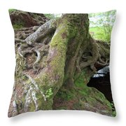 Rooting Out Evil Throw Pillow