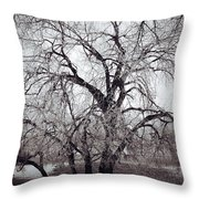 Roots And Flutes  Throw Pillow