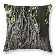 Roots From A Large Tree Inside Jallianwala Bagh Throw Pillow