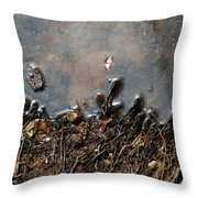 Roots In Water Throw Pillow