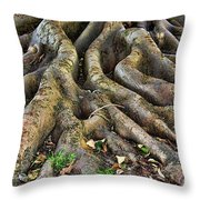 Roots Of Glory Throw Pillow