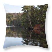 Rope Swing On Bear Creek Lake Throw Pillow