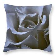 Rose 156 Throw Pillow