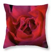 Rose 157 Throw Pillow