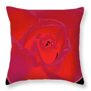 Rose 162 Throw Pillow