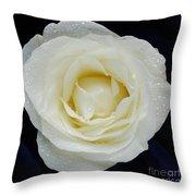 Rose 45 Throw Pillow
