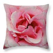 Rose 7 Throw Pillow