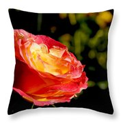 Rose After A Rain Shower Throw Pillow