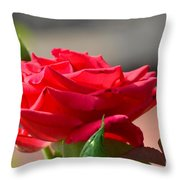 Rose And Her Buds Throw Pillow