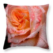 Rose And Raindrops On Black Throw Pillow