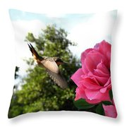 Rose And Rufous Throw Pillow